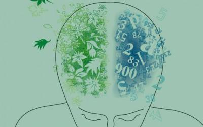 Тест: која половина од мозокот повеќе ја користите?