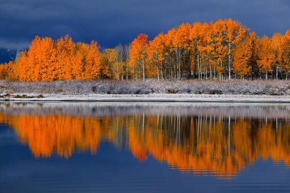 Дива и неверојатна природа