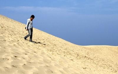 Јапонската пустина