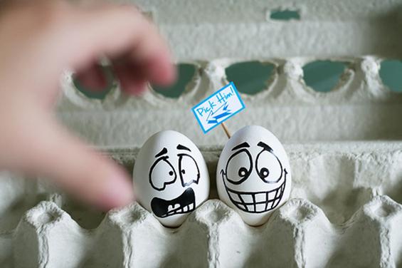 (12) Што сé можете да направите со вашите јајца?