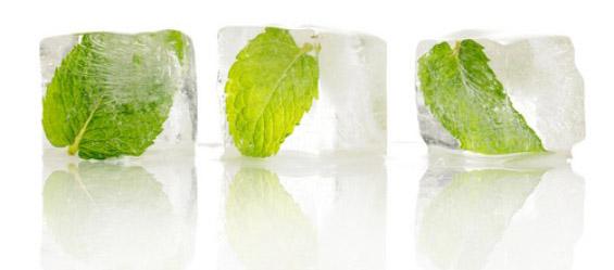 Како поинаку да ги употребите калапите за мраз?