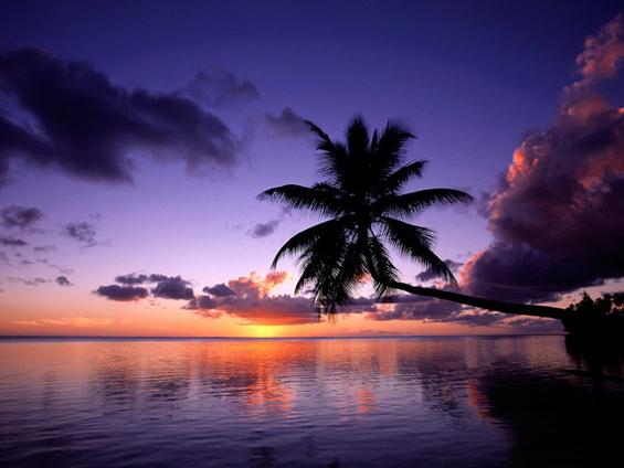 Рајските плажи на островот Муреа