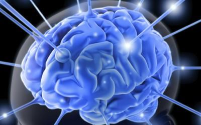 Како да ја усовршите способноста за помнење?