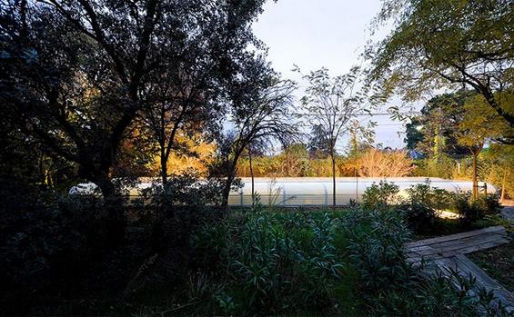 Канцеларија лоцирана во фантастичен шумски предел