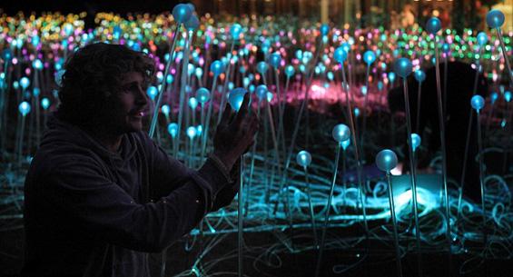 Магична ливада создадена од 5000 божиќни сијалици