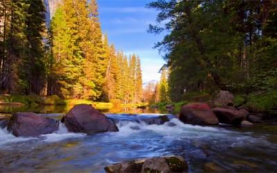 Убавината на Јосемити собрана во едно прекрасно видео
