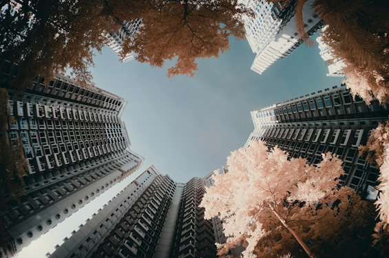 Хонг Конг во розова варијанта