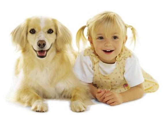 Кучињата и 2-годишните деца подеднакво разбираат