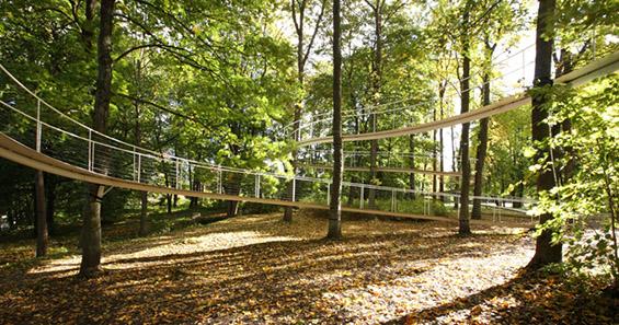 Лебдечка шумска патека
