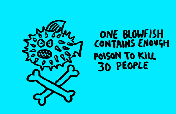 Забавни илустрирани факти