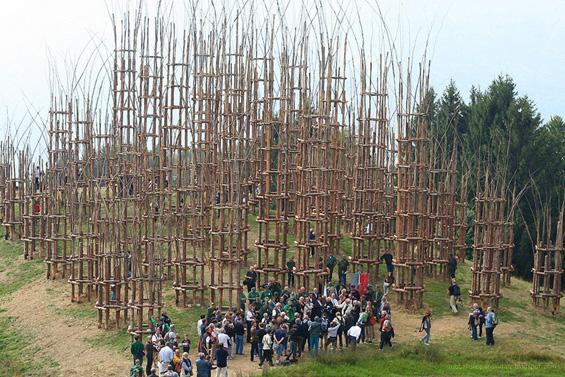 Катедрала од живи дрвја