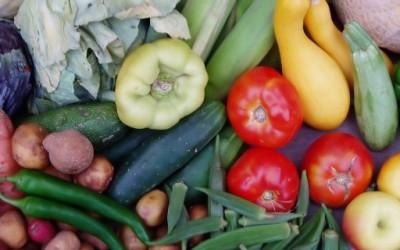 Необични фобии поврзани со храната