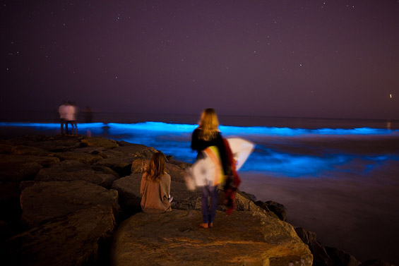 Флуоресцентни океански бранови