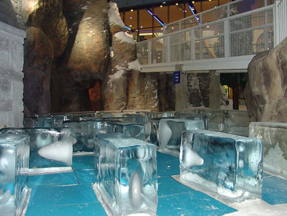 Прекрасниот затворен зимски ски-центар во Дубаи