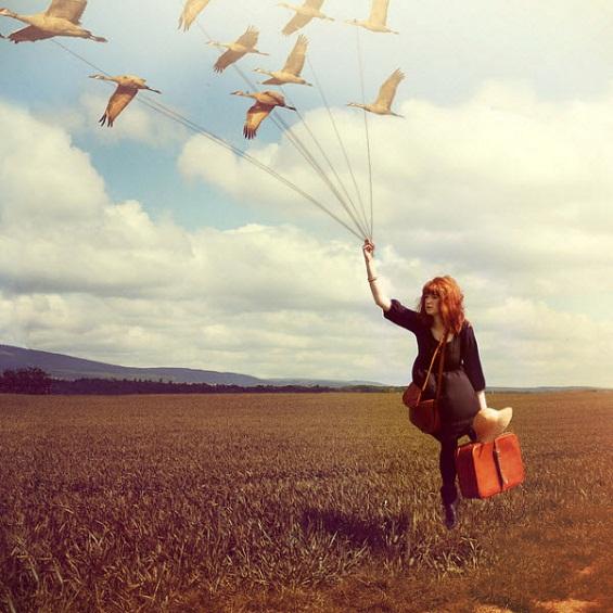 Летајте без граници