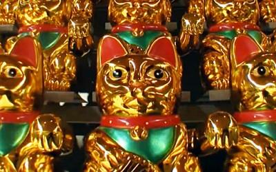 Армија од среќни мачки