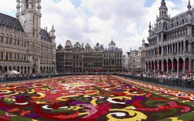 Џиновски килим од цвеќиња