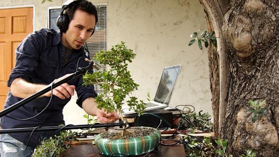 Музика отсвирена на инструменти од природата