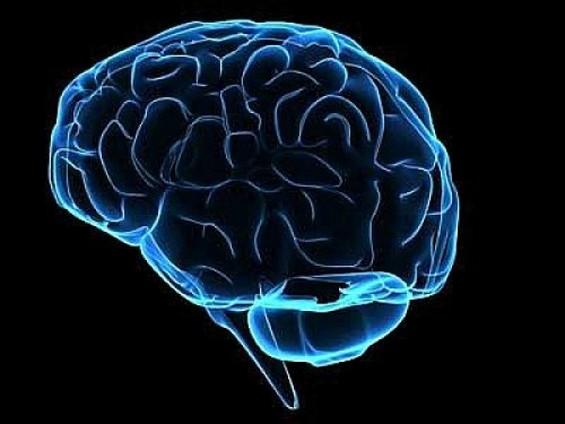 Неверојатни факти за мозокот кои ќе ве замислат