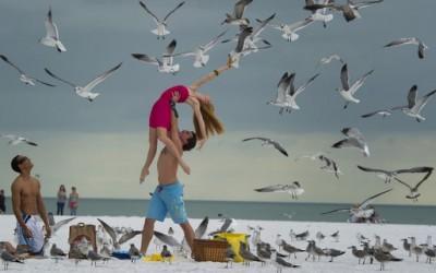 Танцувачи меѓу нас