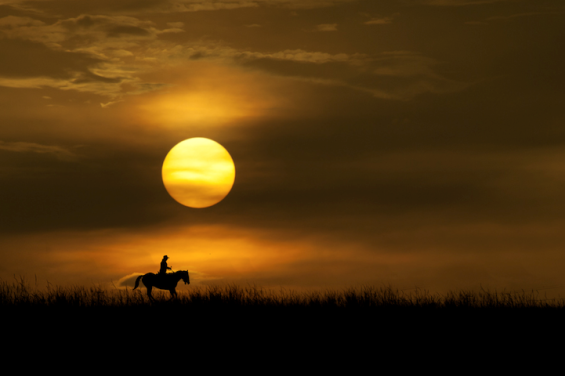 Прекрасни силуети на зајдисонце
