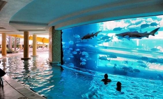 Застрашувачки тобогани низ аквариум со ајкули