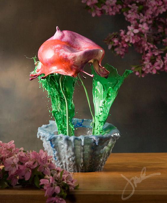 """Ликвидни цвеќиња """"замрзнати"""" во времето"""