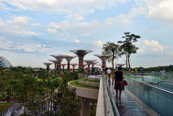 Супердрвјата во Сингапур