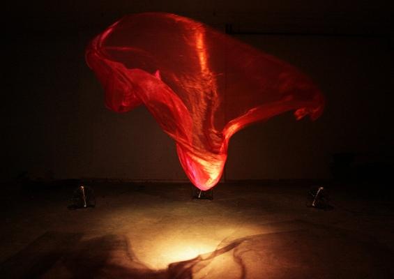 Магичен танц кој ќе ве хипнотизира
