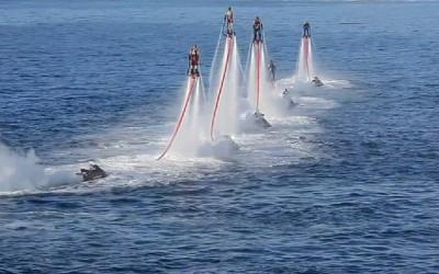 Летајте како птица, пливајте како делфин