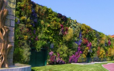 Најголемата вертикална градина во светот