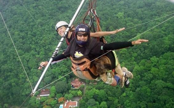 Слатките авантури на Оскар, кучето кое го прошета цел свет