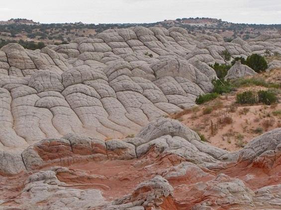 Белиот џеб - скриено дело на природата