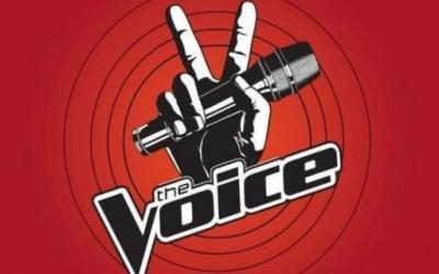 The voice - едно поинакво талент шоу