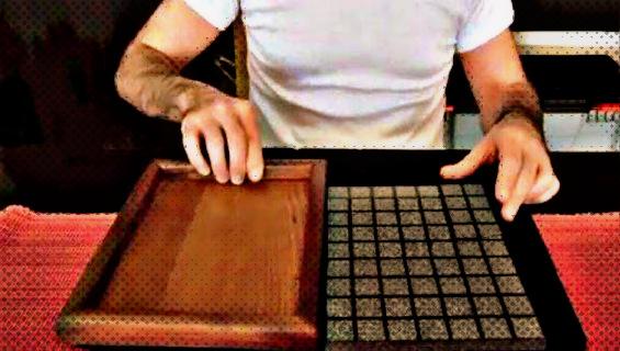 Неверојатен трик кој го воодушеви светот