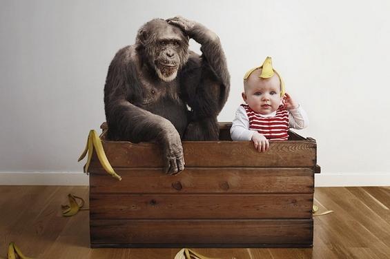Авантурите на едно бебенце
