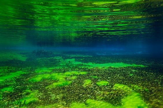 (9) Најчистото езеро во светот