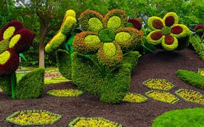 Прекрасни креации од растенија и цвеќиња