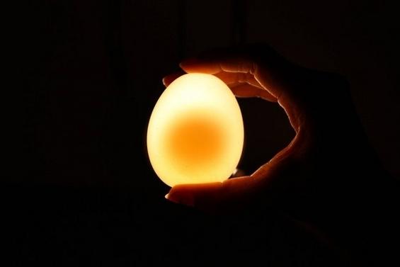 Неверојатно интересен експеримент со јајце и оцет
