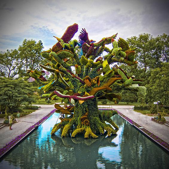 Прекрасни креации од разнобојни растенија