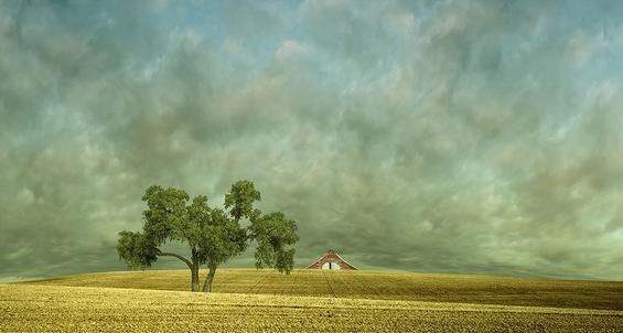 Надреални фотографии од живописни пејзажи со полиња