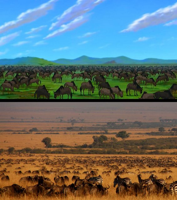 Сцени од Кралот Лав кои можете да ги забележите на вистинско сафари