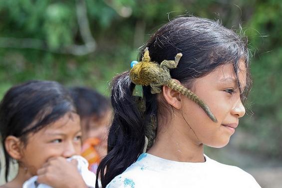 Најмалото мајмунче во светот
