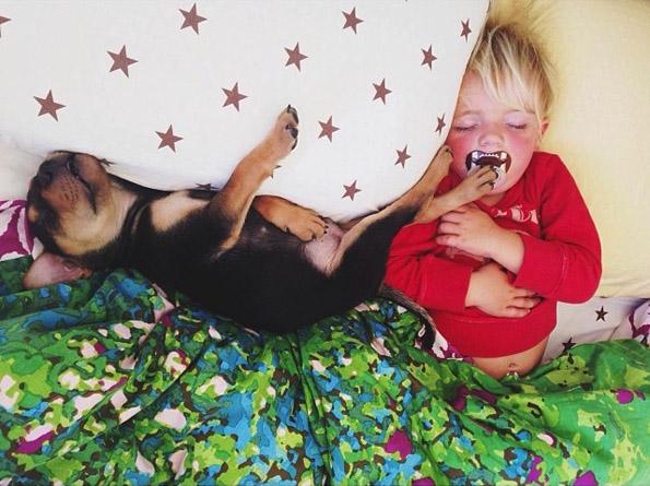 Неодоливи фотографии од 2-годишно дете и мало кутре за време на нивната попладневна дремка