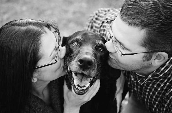 Фотографии кои ќе ве натераат веднаш да го гушнете вашето милениче