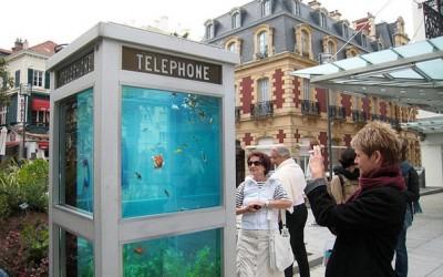 Говорница претворена во јавен аквариуми