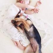 Слаткиот Боу во прегратките на неговото куче Тео