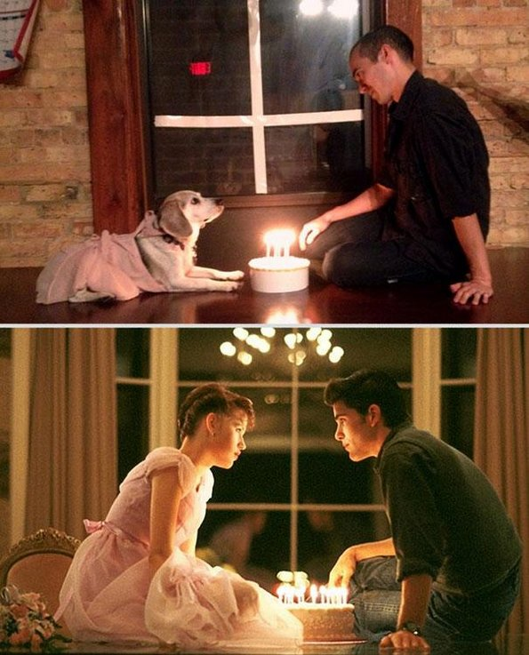 Романтични филмски сцени со кучето на шефот