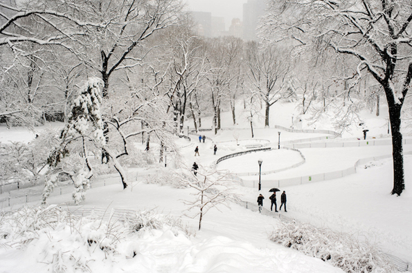 Магични фотографии од Централ Парк под снежна покривка