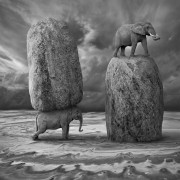 Прекрасни фотографии во надреалистичен стил